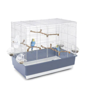 Get 13% Off On Parrot Essentials IRENE Parakeet, Budgie & Small Parrot Cage
